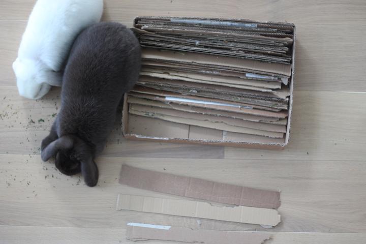 hjemmelavet kaninlegetøj3