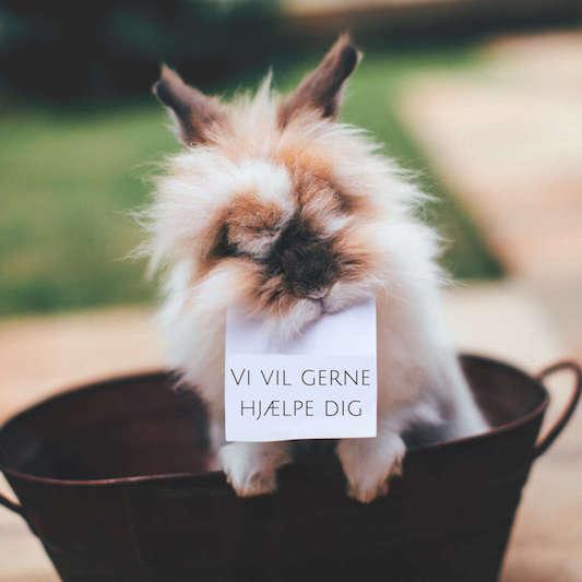 Kaninbutikken - legetøj til kaniner